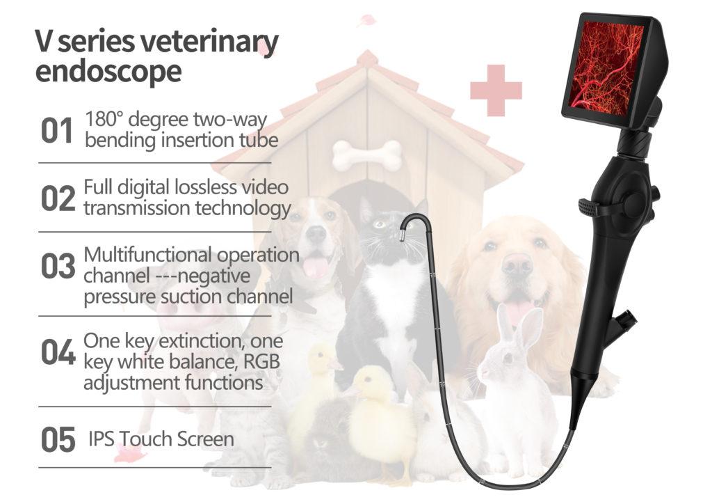 veterinary endoscope