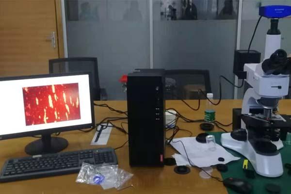 ferrography-analysis-report